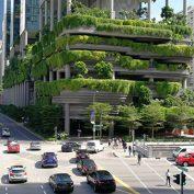 پوشش گیاهی عمودی: تأثیرات بر منظر شهری